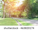 Stone Pathway In The Green Par...