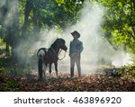 Small photo of Stableman and horse in forest of smoke