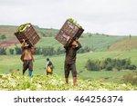 phop phra  tak  thailand  ... | Shutterstock . vector #464256374