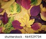 autumn leaves background | Shutterstock . vector #464529734