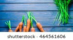 fresh carrots | Shutterstock . vector #464561606