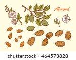 hand drawn almonds set ... | Shutterstock .eps vector #464573828