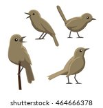 bird poses nightingale vector... | Shutterstock .eps vector #464666378
