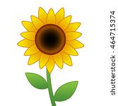cartoon vector sunflower... | Shutterstock .eps vector #464715374