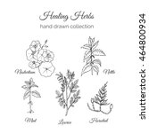 holistic medicine. healing... | Shutterstock .eps vector #464800934