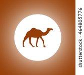 camel icon. vector concept...