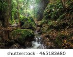 river in stones of tropical... | Shutterstock . vector #465183680