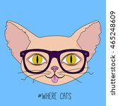 cute hipster cat head with... | Shutterstock .eps vector #465248609