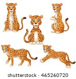 leopard cartoon set collection   Shutterstock .eps vector #465260720
