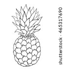 pineapple fruits vector... | Shutterstock .eps vector #465317690