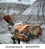 A petrified log has crystallized into many varied colors formed by silica, iron, carbon, manganese and other minerals. Petrified Forest National Park in Arizona  result of iron minerals that so - stock photo
