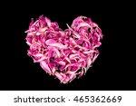 Frame Of Petals Of Pink Peony