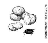 potato vector drawing. isolated ... | Shutterstock .eps vector #465519278