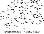 a flock of flying birds. vector | Shutterstock .eps vector #465574160