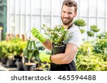 portrait of a handsome gardener ... | Shutterstock . vector #465594488