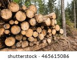 a stock pile of timber  chopped ... | Shutterstock . vector #465615086