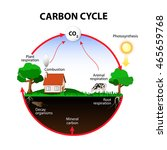 carbon cycle. the carbon path... | Shutterstock .eps vector #465659768