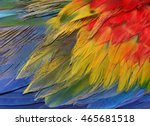 an amazing colorful background... | Shutterstock . vector #465681518