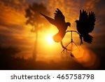 silhouette of pigeon dove... | Shutterstock . vector #465758798