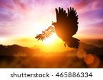 silhouette of dove carrying... | Shutterstock . vector #465886334