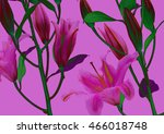 lilly flower  abstract colorful ... | Shutterstock . vector #466018748