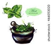 hand drawn watercolor... | Shutterstock . vector #466053020