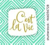c'est la vie. french phrase...   Shutterstock .eps vector #466056728