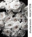 monochrome flowers | Shutterstock . vector #466147358