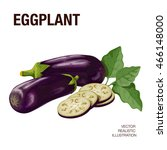 eggplant. the illustration on a ... | Shutterstock .eps vector #466148000