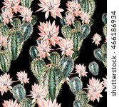 watercolor pattern with cactus .... | Shutterstock . vector #466186934