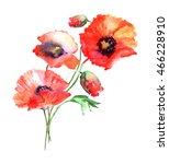 beautiful watercolor red... | Shutterstock . vector #466228910