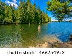 beautiful westwood lake in...   Shutterstock . vector #466254953