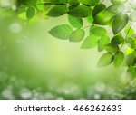 abstract spring background with ... | Shutterstock . vector #466262633