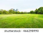Beautiful Park Scene In Public...