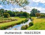 stream with trees and grass on... | Shutterstock . vector #466313024