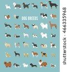 dog breeds vector illustration | Shutterstock .eps vector #466335968