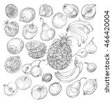 set of fruits. freehand drawing.... | Shutterstock .eps vector #466420004