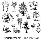 hand drawn trees. collection of ... | Shutterstock .eps vector #466449860