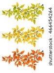 set branches with autumn yellow ... | Shutterstock .eps vector #466454264