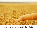 hands of little girl in the... | Shutterstock . vector #466541144