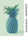 vintage ripe whole pineapple. | Shutterstock . vector #466590203