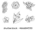 hand drawn tropical flower... | Shutterstock .eps vector #466684550