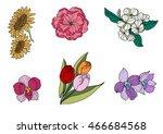 hand drawn tropical flower... | Shutterstock .eps vector #466684568