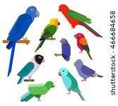 cartoon parrots collection.... | Shutterstock .eps vector #466684658