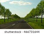 Avenue With Roadside Trees...