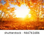 autumn landscape with trees in ... | Shutterstock . vector #466761686