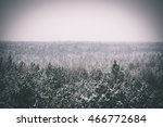 panoramic view of misty forest. ... | Shutterstock . vector #466772684