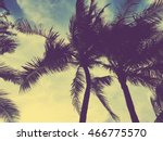 tropical palm tree with sun... | Shutterstock . vector #466775570