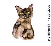 Watercolor Close Up Portrait Of ...