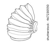 a bunch of bananas hand drawn... | Shutterstock . vector #467230550